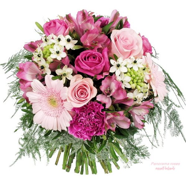 Beautiful images photos nb facebook images for Bouquet de fleurs 70 ans